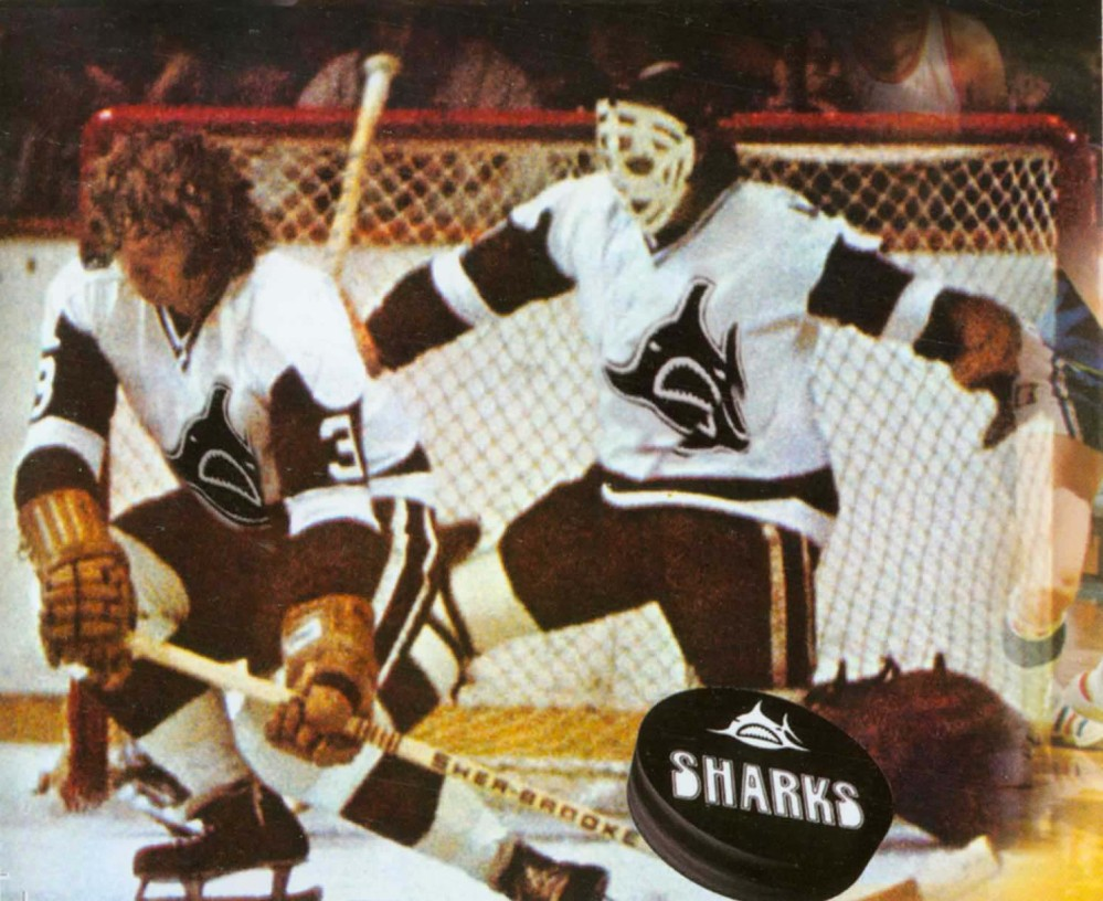 Los Angeles Sharks Hockey Team Los Angeles Sharks Hockey Team