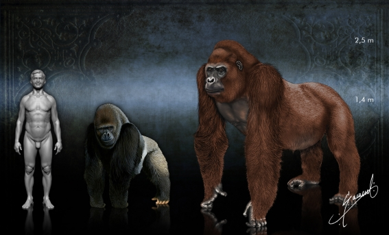Gigantopithecus Intriguing new hypothe...