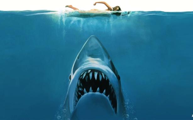 sharkx