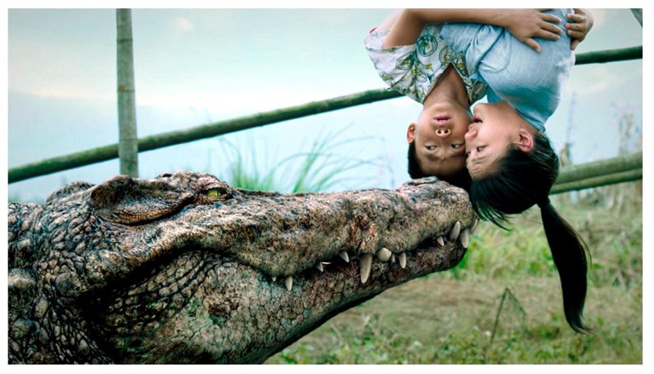 gators croc1