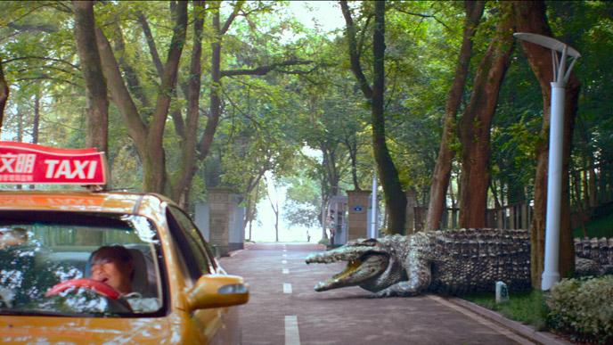 gators photo-million-dollar-crocodile-2012-4