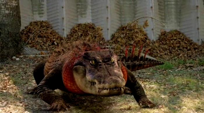 gators1