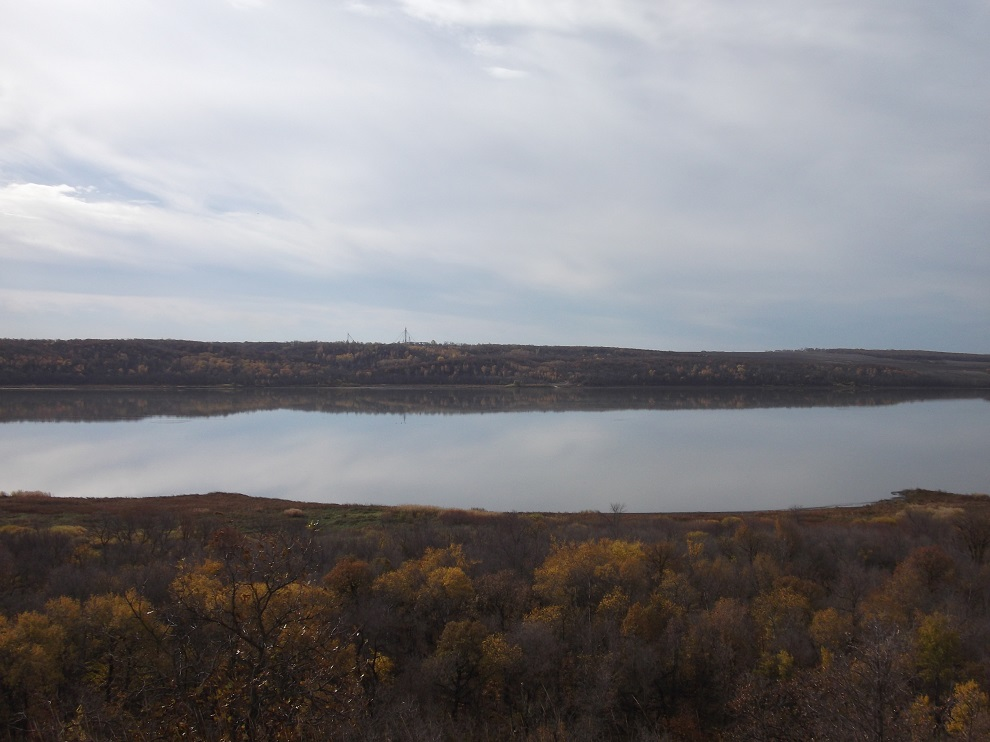 swan lake4