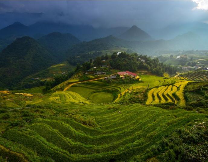 nat geo vietnam