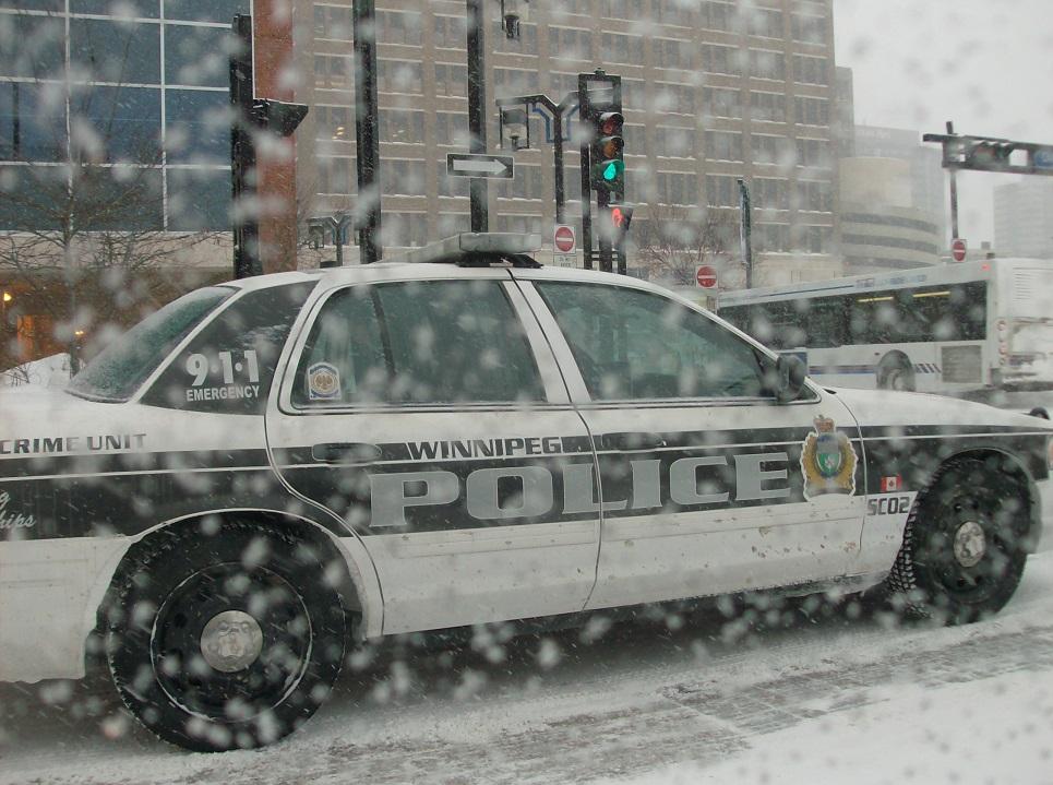 cop car (2)