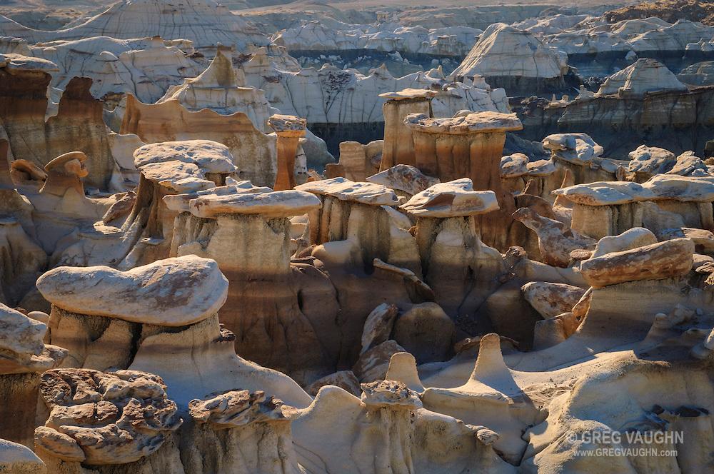 Hoodoos in the Bisti Badlands, Bisti/De-Na-Zin Wilderness, New Mexico.