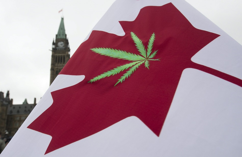 A Canadian flag with a cannabis leaf flies on Parliament Hill during a 4/20 protest, Monday, April 20, 2015 in Ottawa, Ontario. (Adrian Wyld/The Canadian Press via AP) MANDATORY CREDIT