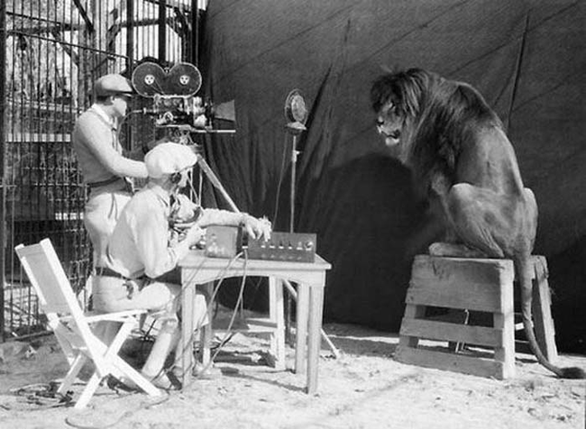 rare FIlming the MGM lion