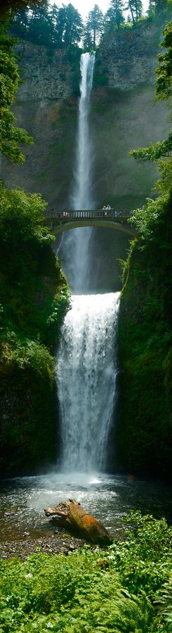 pin14 Multnomah Falls, Oregon, USA