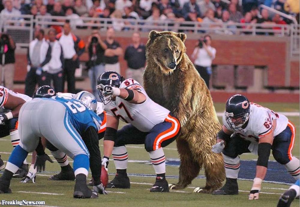 bears-quarterback-15632