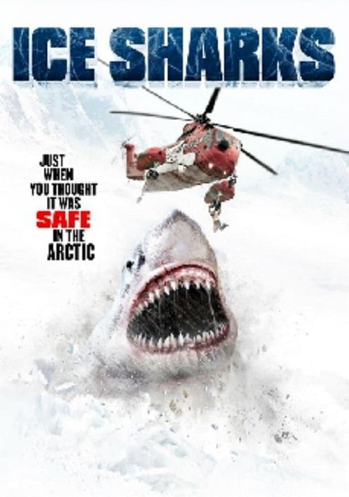 sharks11111