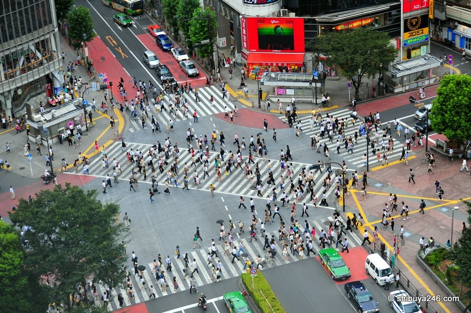 shibuya-crossing-157