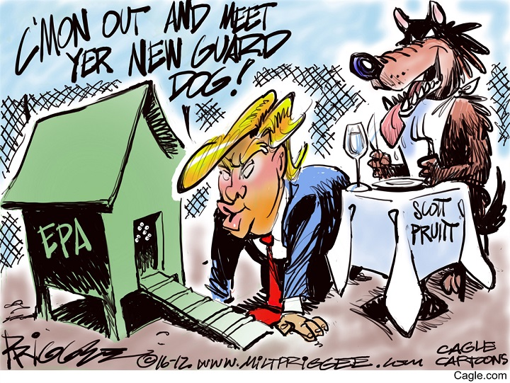 Looney Toons | Opinion - Liberal